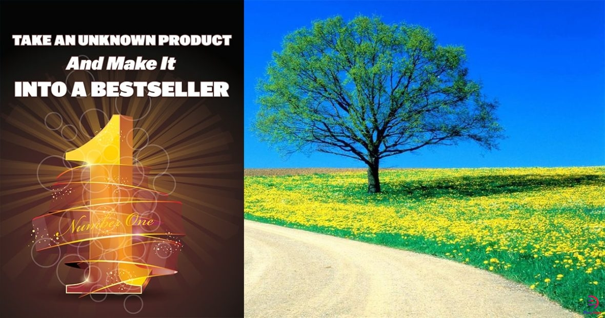 Take-An-Unknown-Product-And-Make-It-Into-A-Bestseller